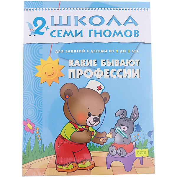 """Третий год обучения """"Какие бывают профессии"""", Школа Семи Гномов"""