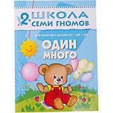 """Третий год обучения """"Один много"""", Школа Семи Гномов"""