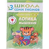 """Четвертый год обучения """"Логика, мышление"""", Школа Семи Гномов"""