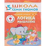 """Шестой год обучения """"Логика, мышление"""", Школа Семи Гномов"""