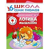 """Седьмой год обучения """"Логика, мышление"""", Школа Семи Гномов"""