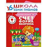"""Седьмой год обучения """"Счет, форма, величина"""", Школа Семи Гномов"""