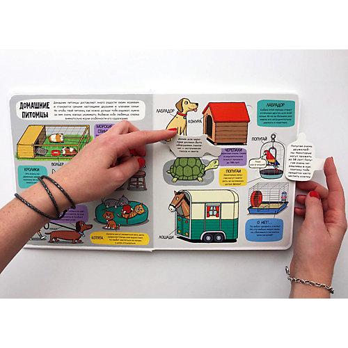 """Книжка с клапанами """"Мир животных"""", Маленькие исследователи от Clever"""