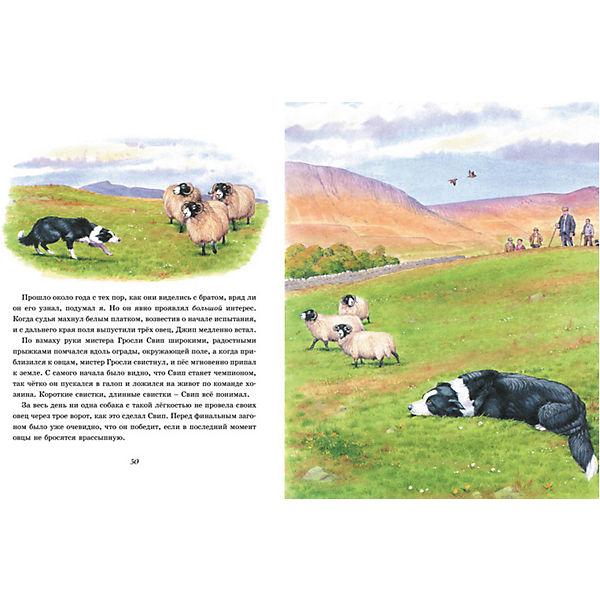 """Книга """"Рассказы о животных"""", Махаон"""