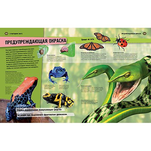 """Иллюстрированная энциклопедия Animal Planet """"Животные крупным планом"""", Махаон от Махаон"""