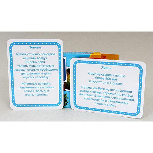 """Развивающие карточки """" Мои первые уроки. Природа"""" от Проф-Пресс"""