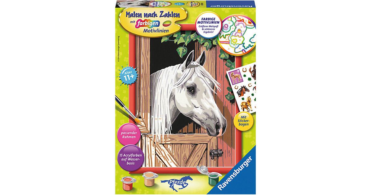 Malen nach Zahlen Classic Serie Pferde Stolzer ...