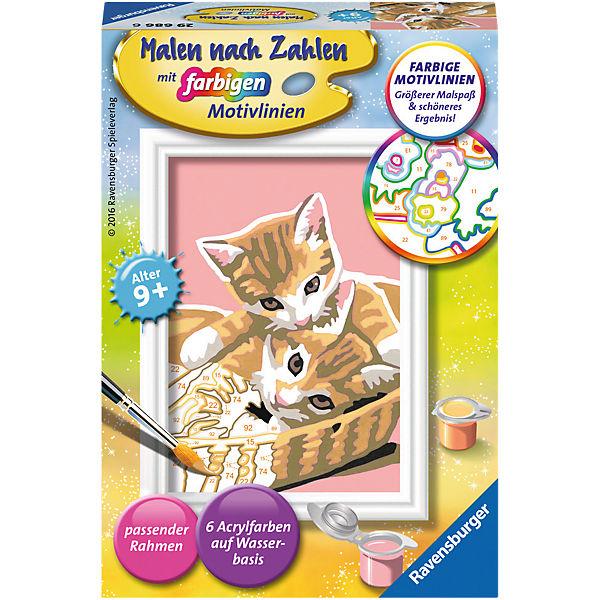Malen Nach Zahlen Serie F Katzenbabys Ravensburger