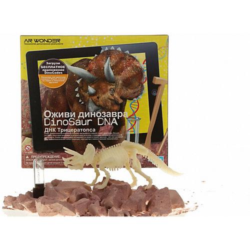 """Набор """"Оживи динозавра. ДНК Трицераптоса"""" от 4M"""