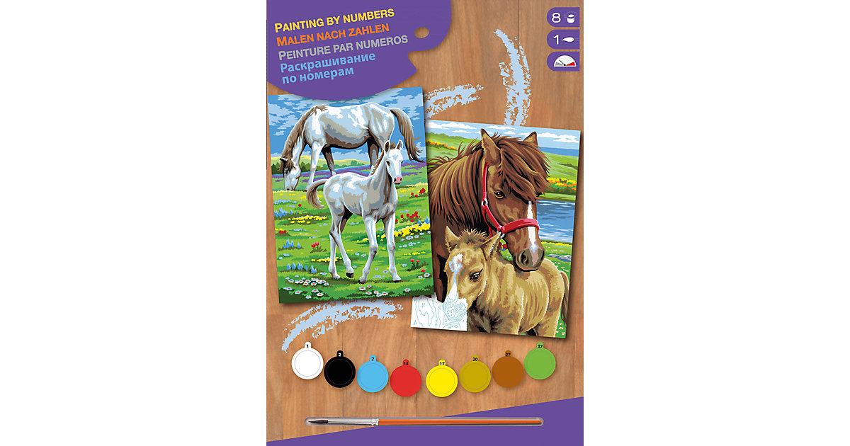 2er Set Malen nach Zahlen Pferde