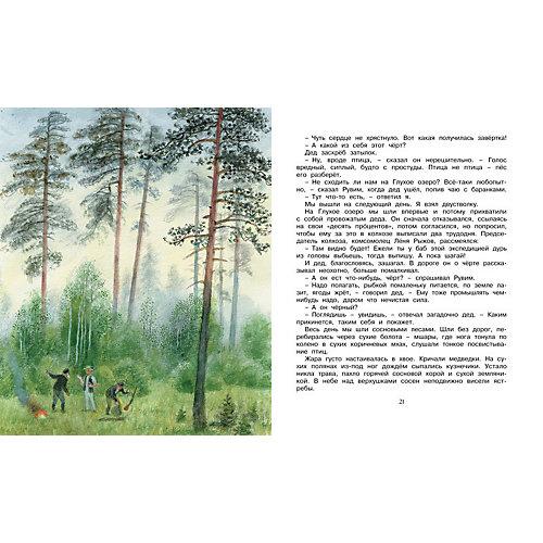 Корзина с еловыми шишками, К.Г. Паустовский, MACHAON от Махаон