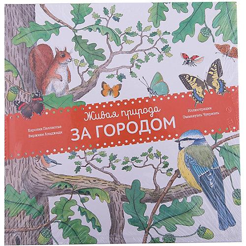 Живая природа: За городом от Манн, Иванов и Фербер