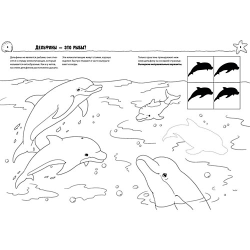 """Раскраска """"Как? Почему? Зачем? Морские животные"""", Clever от Clever"""