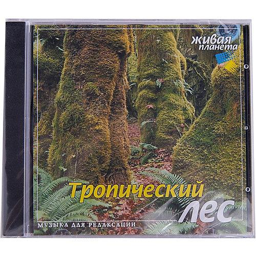 """CD """"Тропический лес"""" от Би Смарт"""