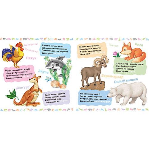 Загадки о животных от Робинс