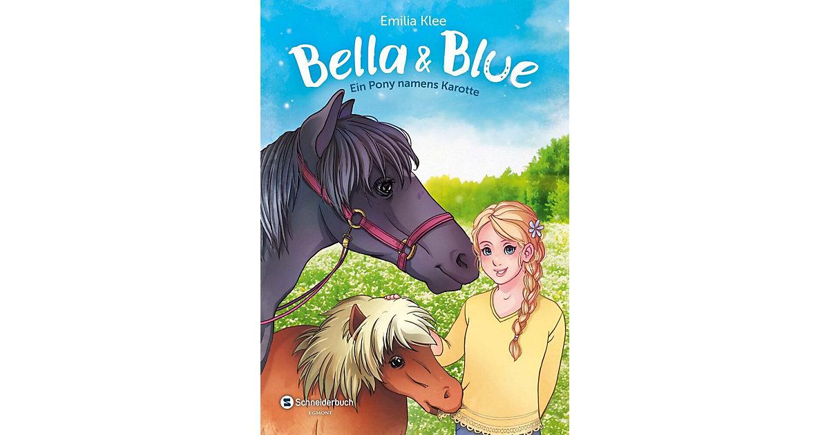 Bella & Blue: Ein Pony namens Karotte, Band 3