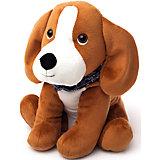 Игрушка-грелка Бигль Cozy Pets, Warmies
