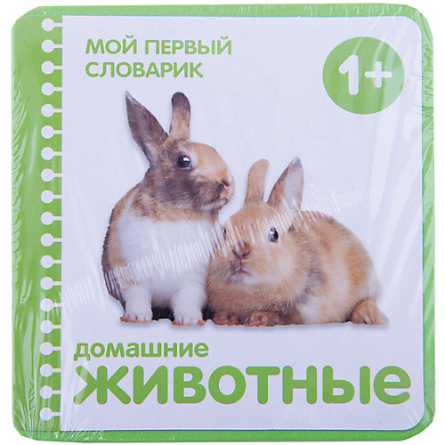 """Мой первый словарик """"Домашние животные"""" от Мозаика-Синтез"""