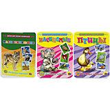 """Комплект из 3 наборов карточек """"Птицы, Млекопитающие, Насекомые"""""""
