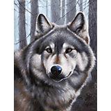 Живопись на картоне 30х40см  Волк Белоснежка