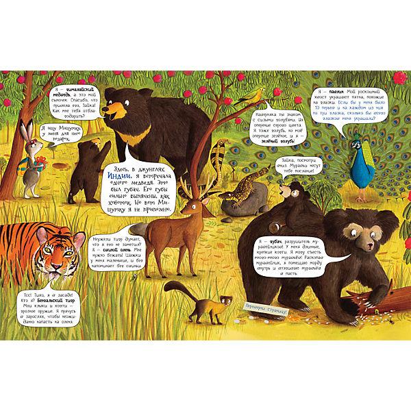 На поиски панды, Росмэн