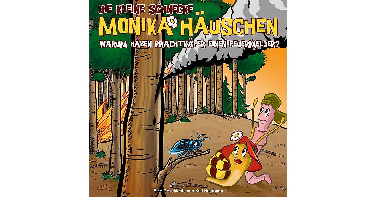 CD Die kleine Schnecke Monika Häuschen 48 - Warum haben Prachtkäfer einen Feuermelder?