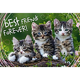 Пазлы «Дружные котята», 260 деталей