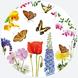 """Тарелки Susy Card """"Бабочки"""" 23 см., 8 шт"""