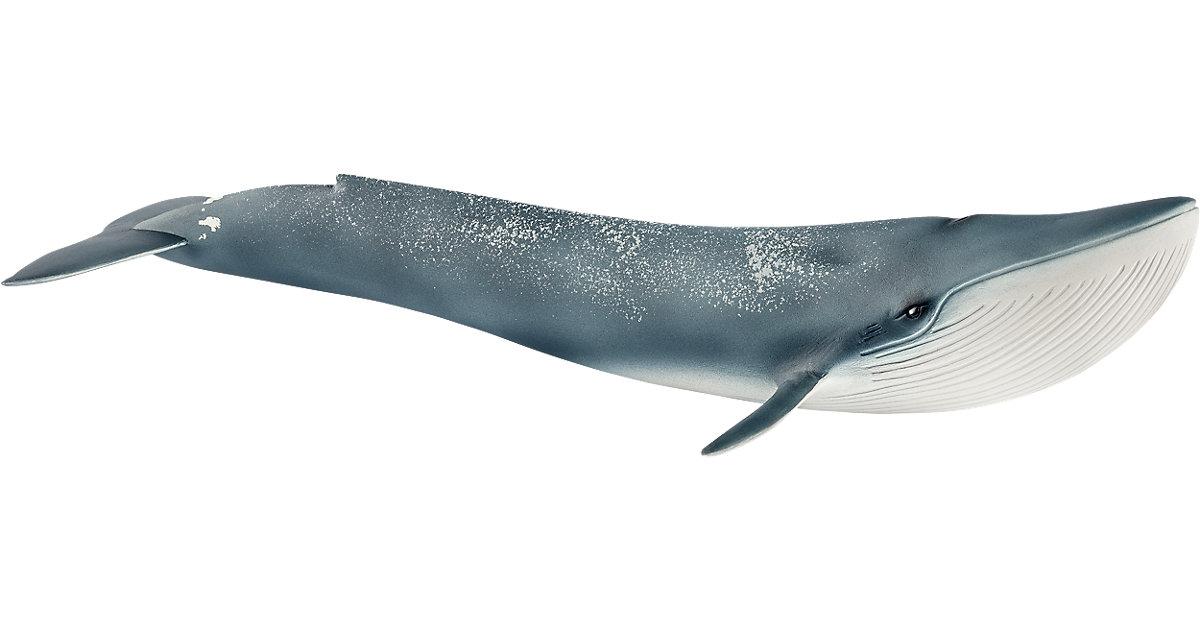 Schleich 14806 Wild Life: Blauwal