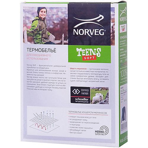 Термобелье Norveg: лонгслив - черный от Norveg