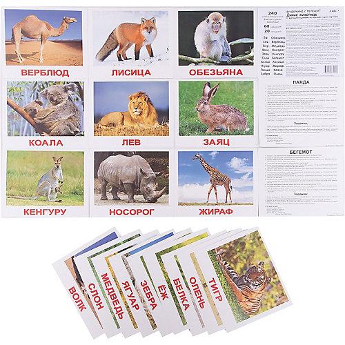 """Набор обучающих карточек Вундеркинд с пелёнок """"Дикие животные"""" 20 штук от Вундеркинд с пелёнок"""