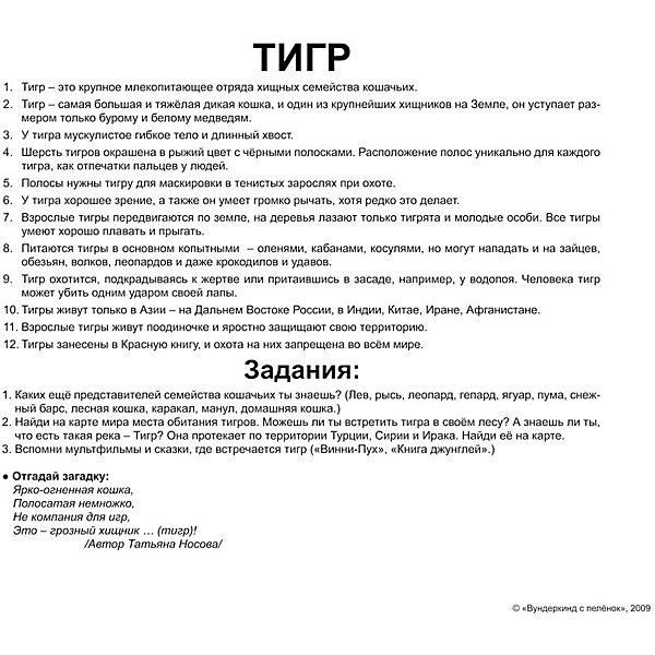 """Набор обучающих карточек Вундеркинд с пелёнок """"Дикие животные"""" 20 штук"""