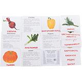 """Набор обучающих мини-карточек Вундеркинд с пелёнок """"Овощи"""" 40 штук"""
