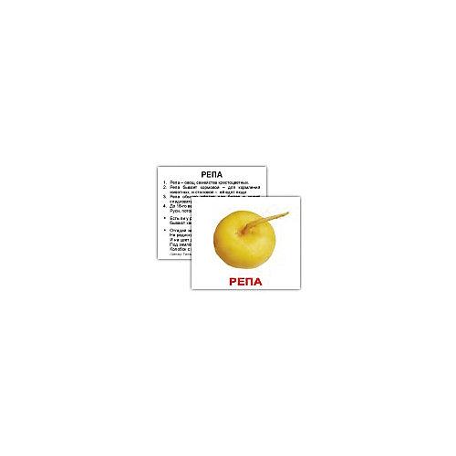 """Набор обучающих мини-карточек Вундеркинд с пелёнок """"Овощи"""" 40 штук от Вундеркинд с пелёнок"""