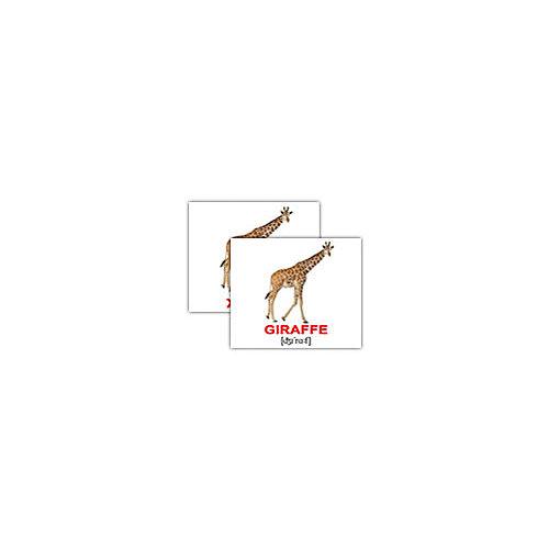 """Набор обучающих мини-карточек Вундеркинд с пелёнок """"Wild animals/Дикие животные"""", двухсторонний 40 штук"""