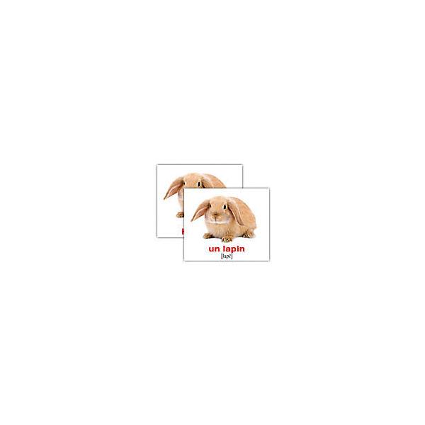 """Набор обучающих мини-карточек Вундеркинд с пелёнок """"Les animaux domestiques/Домашние животные"""", двухсторонний 20 штук"""