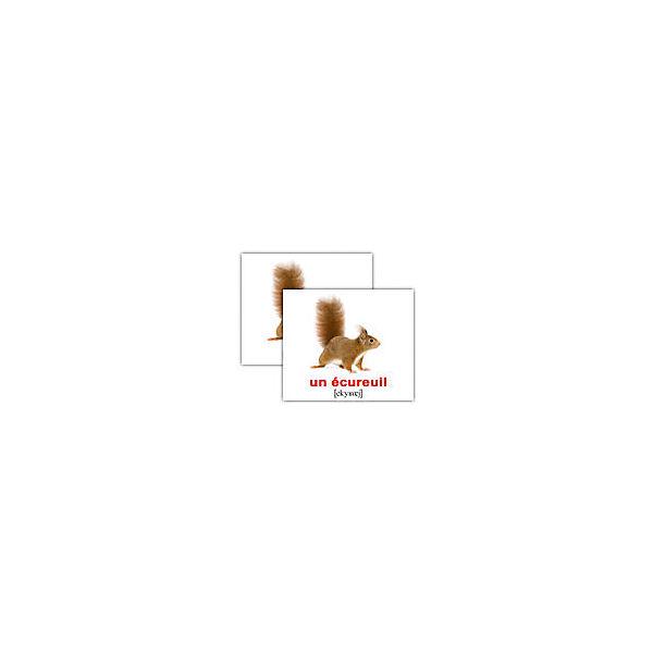 """Набор обучающих мини-карточек Вундеркинд с пелёнок """"Les animaix sauvages/Дикие животные"""", двухсторонний 20 штук"""
