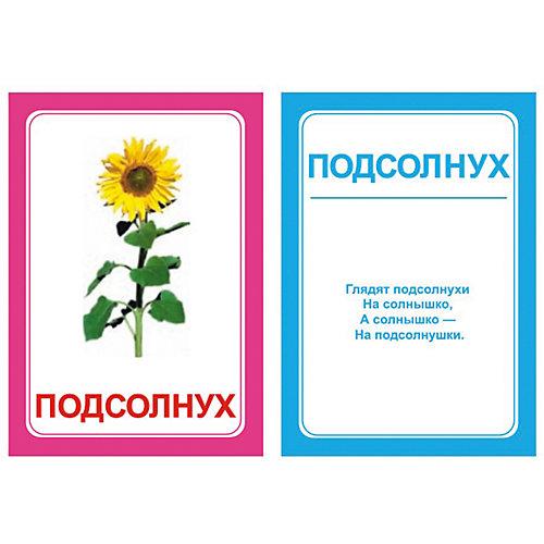 """Набор логопедических карточек Вундеркинд с пелёнок """"Логопедика. Буква Л"""", 30 штук от Вундеркинд с пелёнок"""