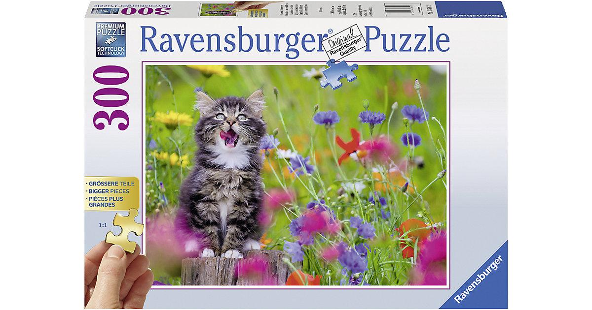 Puzzle 300 Teile Katze im Blumenmeer
