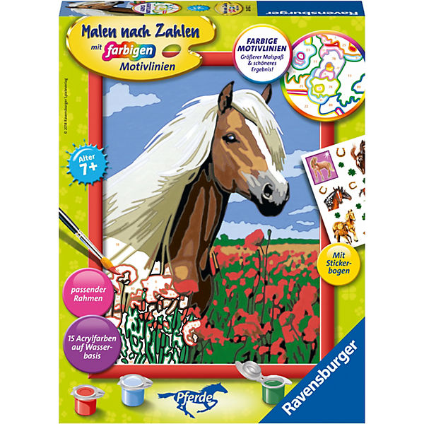 Malen Nach Zahlen 18x24 Cm Mit Farbigen Motivlinien Pferd Haflinger Ravensburger