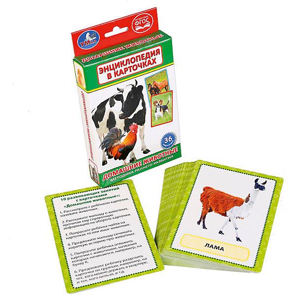 """Карточки развивающие """"Домашние животные"""""""