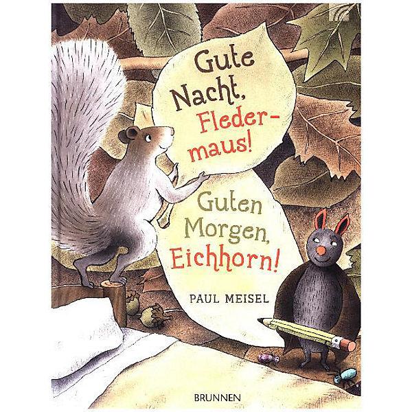 Gute Nacht Fledermaus Guten Morgen Eichhorn Paul Meisel
