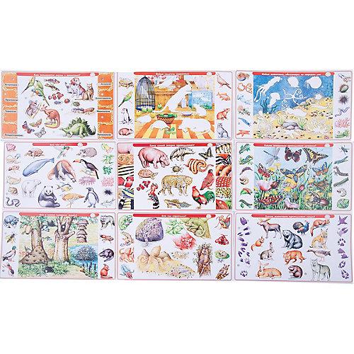 Набор карточек. Детям о животных