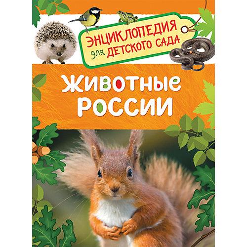 Животные России. Энциклопедия для детского сада от Росмэн