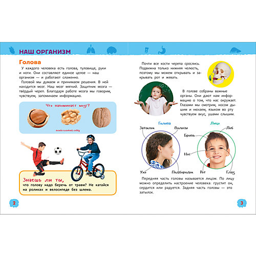 Тело человека. Энциклопедия для детского сада от Росмэн