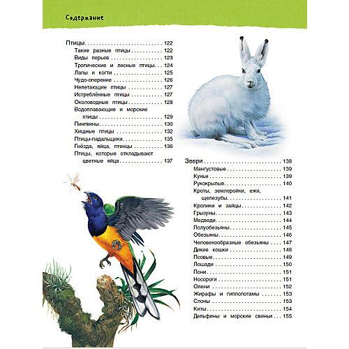 Большая иллюстрированная энциклопедия от Росмэн