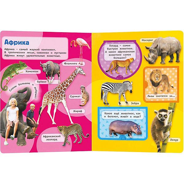 Дикие животные. Книжка с окошками