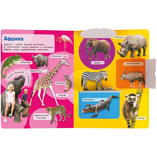Дикие животные. Книжка с окошками от Росмэн