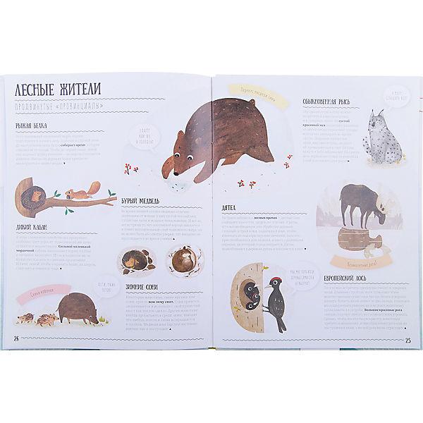 Книга. Как животные адаптируются к окружающей среде? Серия Удивительная природа.21,5х28см.36с.ГЕОДОМ