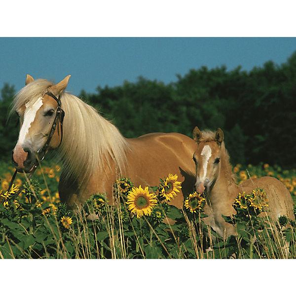 Пазл «Лошади в подсолнухах» XXL 200 шт